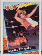 1992 WCW Trading Cards (Topps) Michael Hayes 13