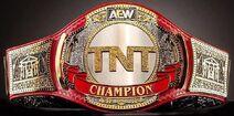 AEW TNT Championship