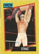 1991 WCW (Impel) Sting 9