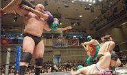 DDT Judgement 2015 18