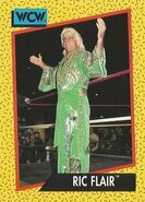 1991 WCW (Impel) Ric Flair 45