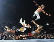 Royal Rumble 2003.3