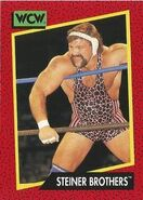 1991 WCW (Impel) Steiner Brothers 107