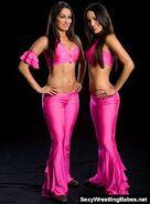 Bella Twins.8