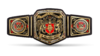 NXT UK Championship