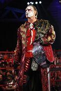 Sting New Belt
