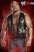 WWE2K14 Steve Austin.1