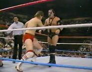 1.9.88 WWF Superstars.00018
