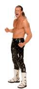 Dolph Ziggler Stat Photo