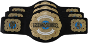 NEVER Openweight Six-Man Tag Team Championship Belt