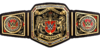 WWE United Kingdom Championship