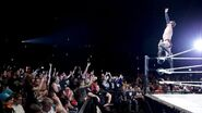 WWE World Tour 2015 - Birmingham 10