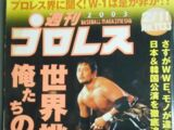 Weekly Pro Wrestling No. 1133