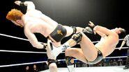 WrestleMania Revenge Tour 2014 - Belfast.8