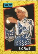 1991 WCW (Impel) Ric Flair 36