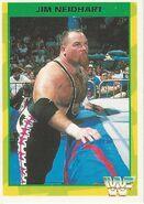 1995 WWF Wrestling Trading Cards (Merlin) Jim Neidhart 97