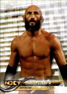 2018 WWE Wrestling Cards (Topps) Tommaso Ciampa 91