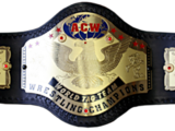 Athletik Club Wrestling Tag Team Championship