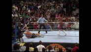 Survivor Series 1989.00008