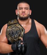 WWEAOPRezarNXTTagChampion