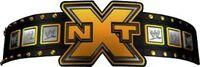 WWE NXT Title