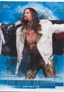 2017 WWE Undisputed Wrestling Cards (Topps) The Brian Kendrick 5