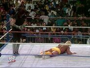 Hulk Hogan The Ultimate Anthology 13