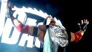 WrestleMania Revenge Tour 2013 - Dublin.6