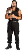 Roman reigns tag team champion by the rocker 69-d67te8t