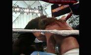 WrestleMania VIII.00009