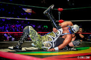 CMLL Domingos Arena Mexico (September 22, 2019) 12