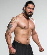 Amanpreet Singh WWE
