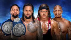 RR 2018 SD Title Match