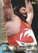 2017 Legends of WWE (Topps) Typhoon 93
