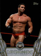 2018 Legends of WWE (Topps) Ken Shamrock 29