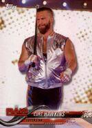 2018 WWE Wrestling Cards (Topps) Curt Hawkins 26