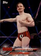 2018 WWE Wrestling Cards (Topps) Jack Gallagher 33