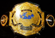 NWA Tag Team championship old 2013
