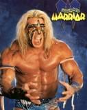 Ultimate Warrior31