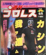 Weekly Pro Wrestling 917