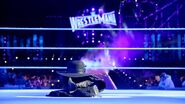 WrestleMania 33.147