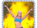2008 WWE Heritage IV Trading Cards (Topps) Kelly Kelly (No.62)