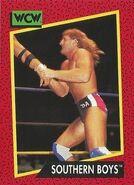 1991 WCW (Impel) Southern Boys 129