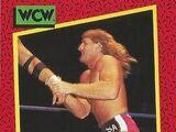 1991 WCW (Impel) Southern Boys (No.129)