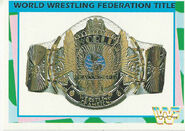 1995 WWF Wrestling Trading Cards (Merlin) World Title 44