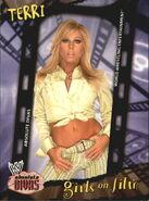 2002 WWE Absolute Divas (Fleer) Terri 88