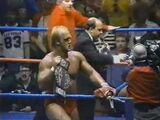 1980s professional wrestling boom