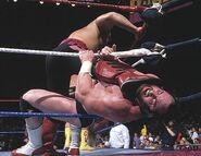Royal Rumble 1991.9
