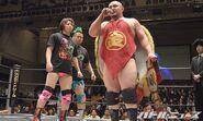 DDT Judgement 2015 21