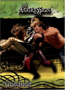 2003 WWE Aggression Goldust 12